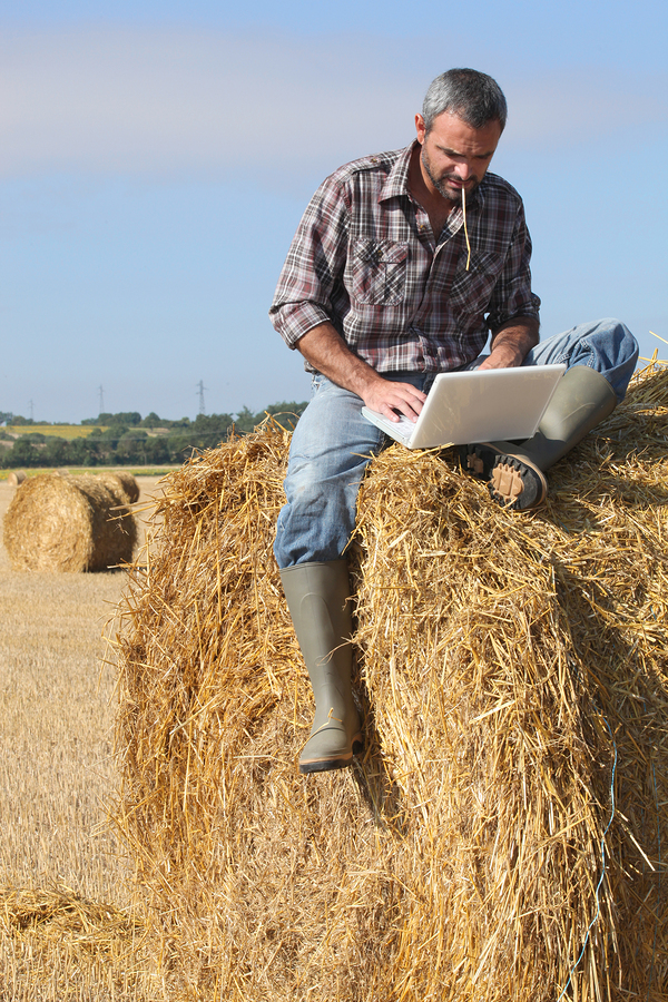 bigstock-Farmer-with-a-laptop-on-a-hays-25735979